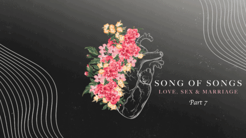 song-of-songs-part7