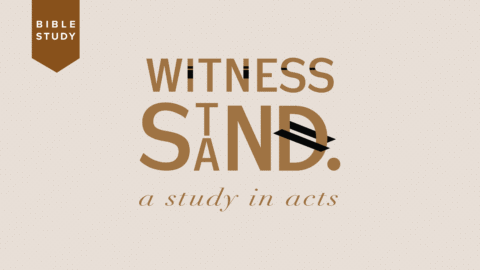 witness-stand